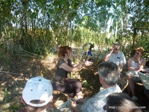 Picnic under the trees in languedoc from Villa Roquette