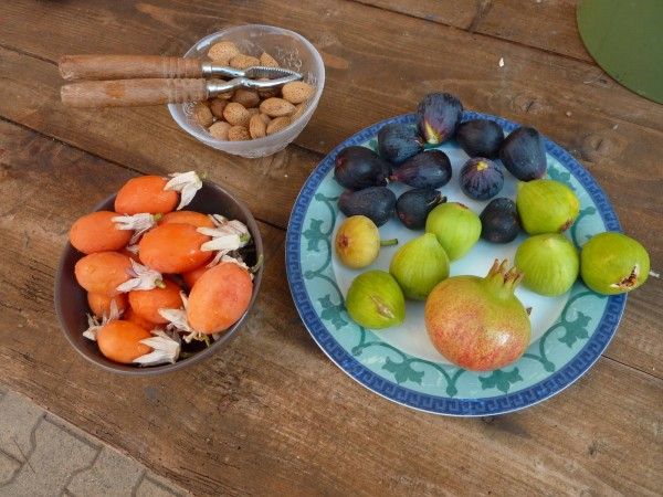 Bowls of fruit for breakfast at Villa Roquette